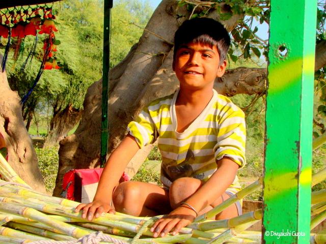 This cute sugarcane juice vendor