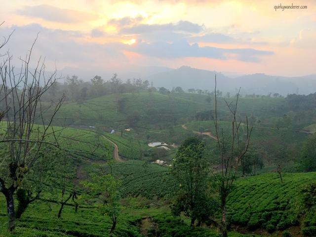 Sunset in Valparai in Tamil Nadu