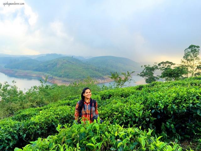 Valparai tea gardens Tamil Nadu